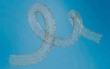Image: The BIOTRONIK Pulsar-18 self-expanding stent (Photo courtesy of BIOTRONIK).